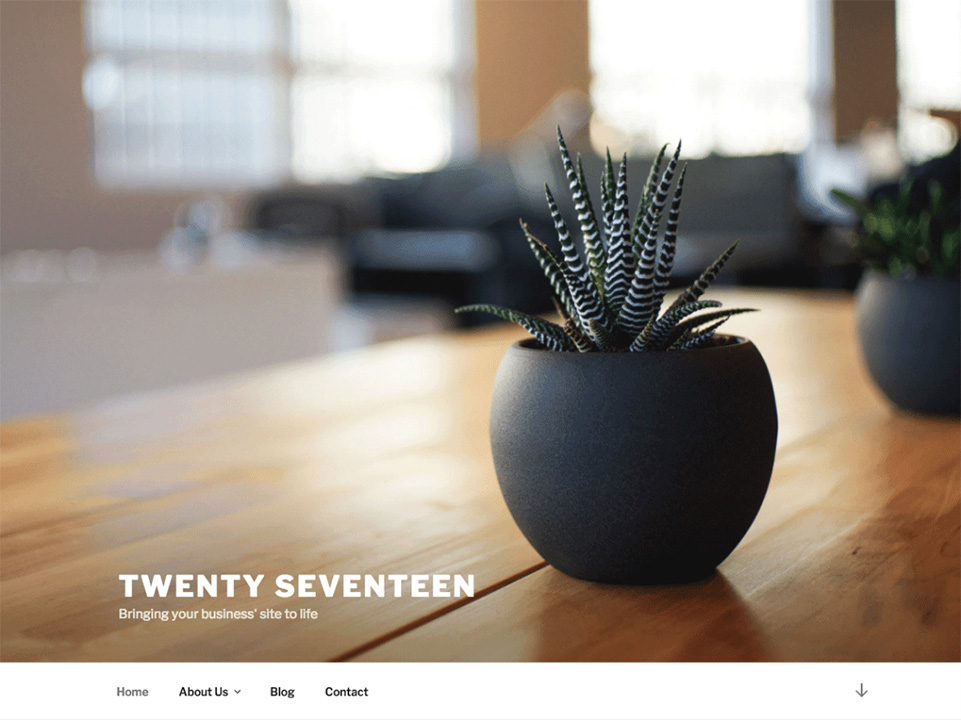 tema Twenty Seventeen