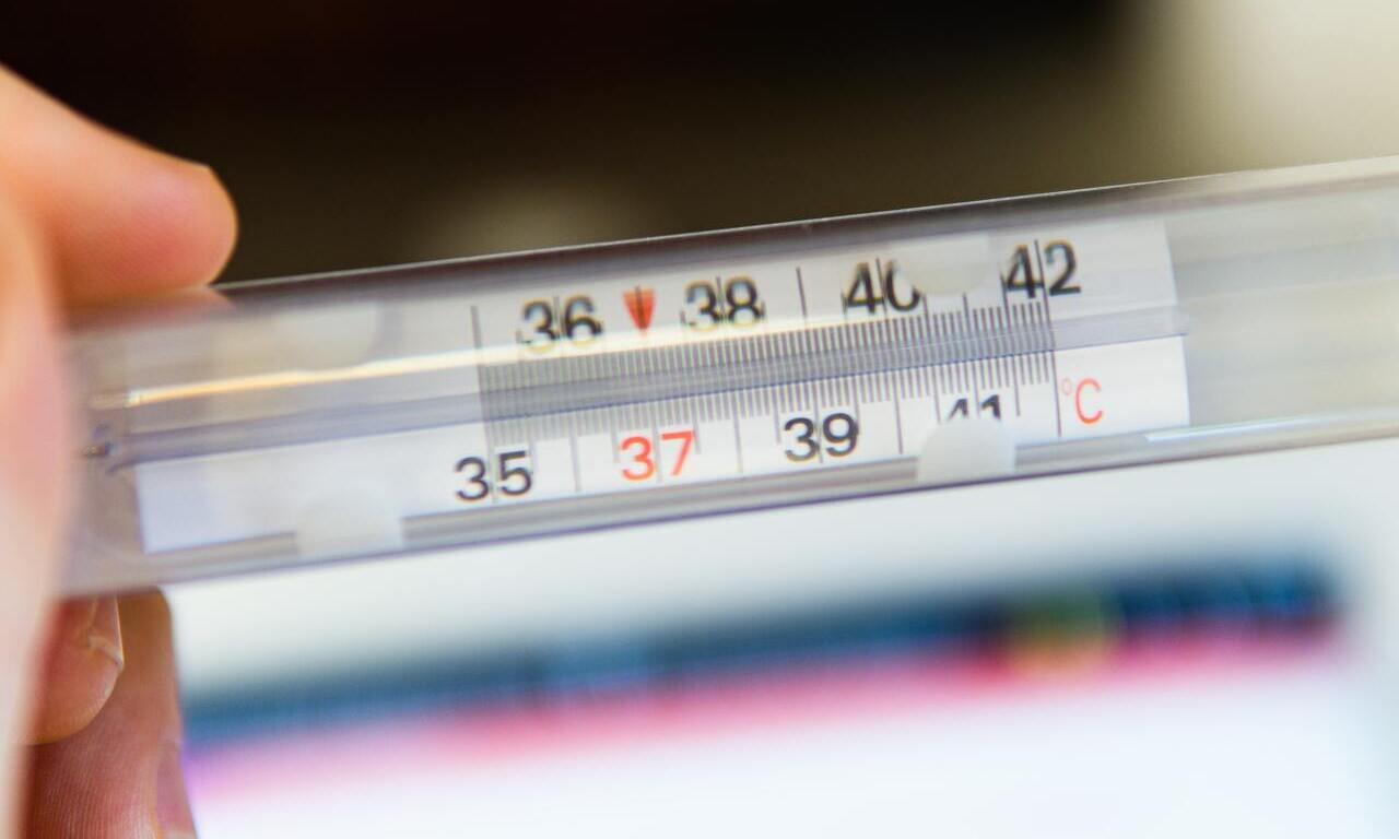 Migliori app per misurare la febbre